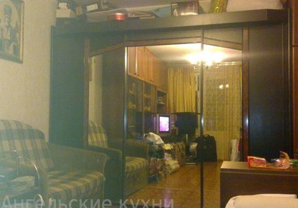 Шкаф купе с зеркалом фото